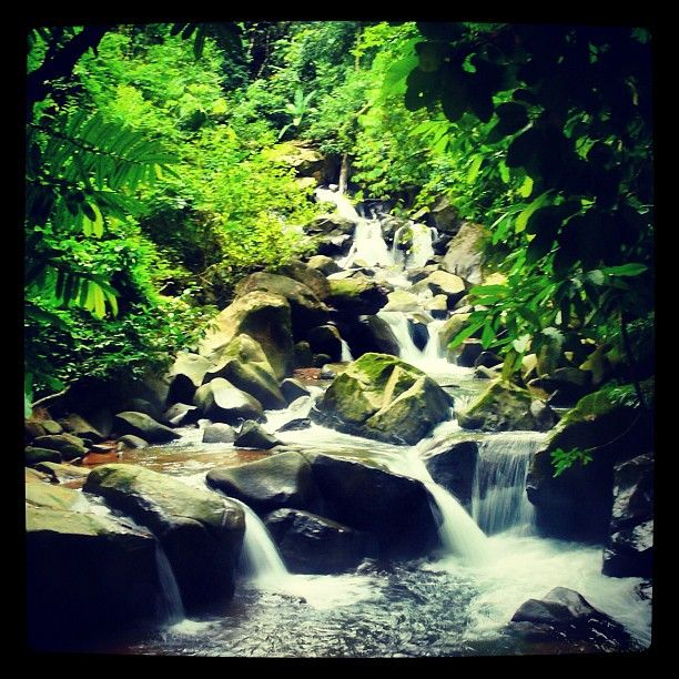Creek near Bahia Ballena
