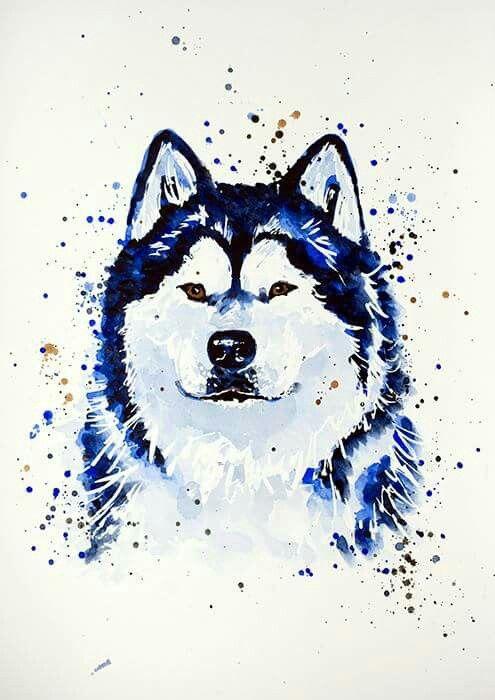 Husky water color | Perros | Pinterest | Huskies siberianos, Jorge y ...