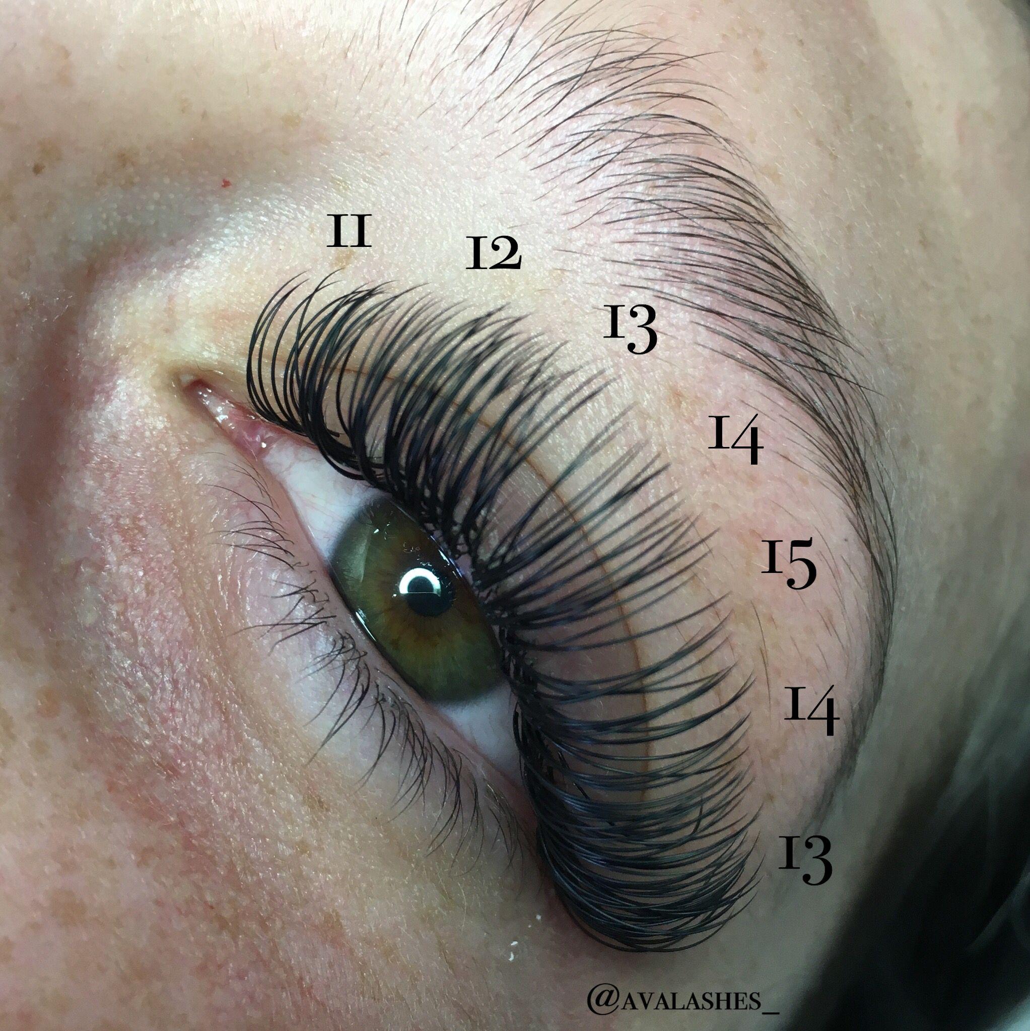 Ava Lashes Eyelash Extensions Classic Mink Dd Curl Lash Mapping Semi