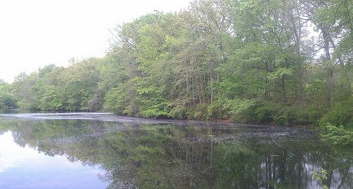Old Mill Lake in LAC