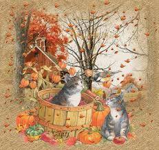 Resultat De Recherche D Images Pour Fond D Ecran Becassine Fall Pictures Art Autumn Nature