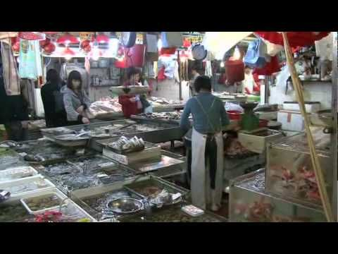 """World Food Markets: China    Explore a food market in China and discover the high value of fresh food in Chinese culture in this preview clip of """"World Food Markets: China"""" available from Learning ZoneXpress."""