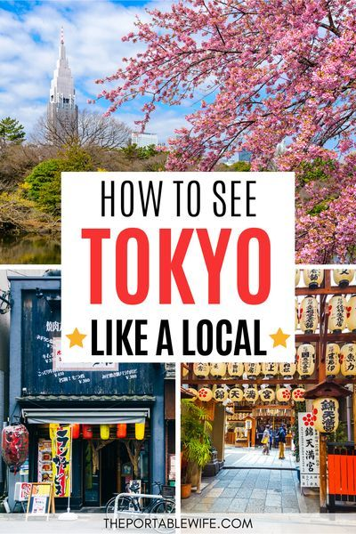 This Tokyo travel guide is full of things to do in Tokyo off the beaten path. From Tokyo hidden gems to must visit Tokyo cafes, this local's guide to Japan will help you make the most of your first time in Tokyo (or your 10th!). | Tokyo travel tips | Travel Tokyo like a local | Non touristy things to do in Tokyo | Tokyo budget travel tips | Planning a trip to Japan | First time Japan travel | Japan off the beaten path | Off the beaten track Tokyo |