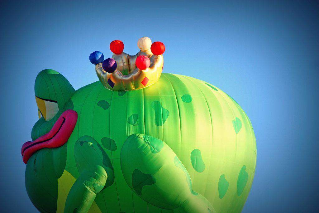 Frog King   Flickr - Photo Sharing!