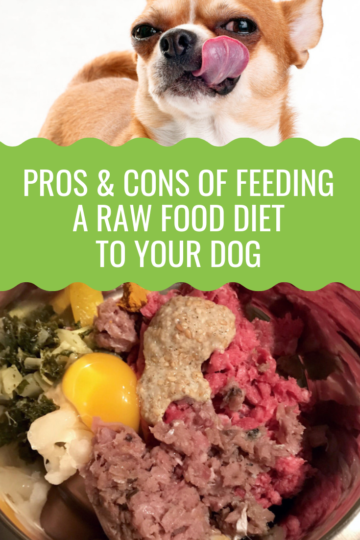 Raw Dog Food Pros And Cons Barking Royalty Raw Dog Food Recipes Food Dog Food Recipes