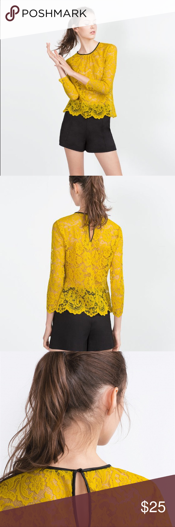 cb3ae389a8df34 ZARA Mustard Lace Top New with tags . Zara Tops Blouses   My Posh ...