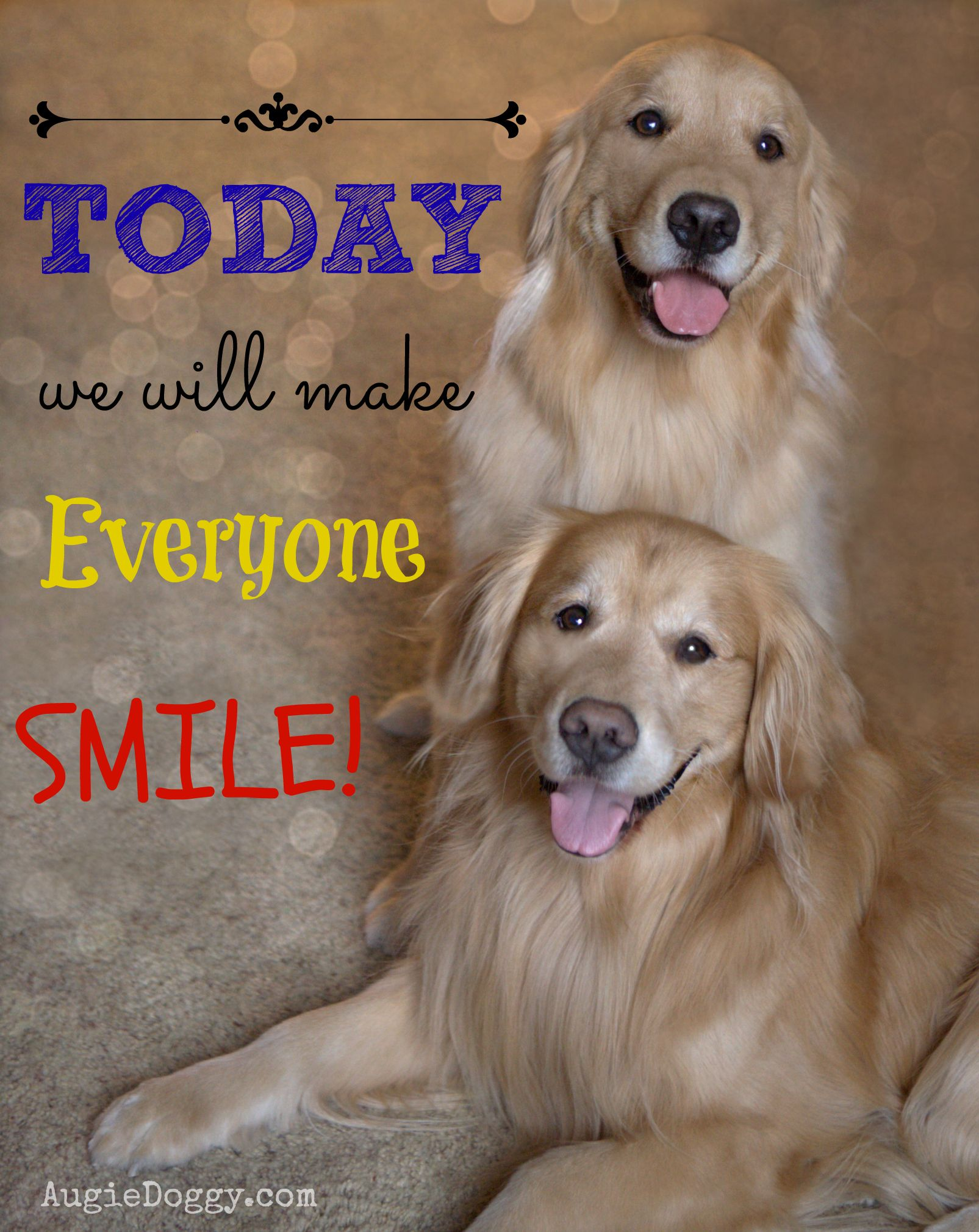 Today We Will Make Everyone Smile Good Morning Fellow Pinners