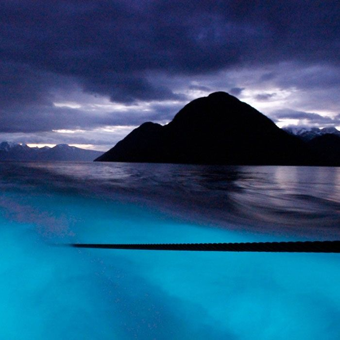 10 glowing trails to hike after dark bioluminescent bay Small islands around the world
