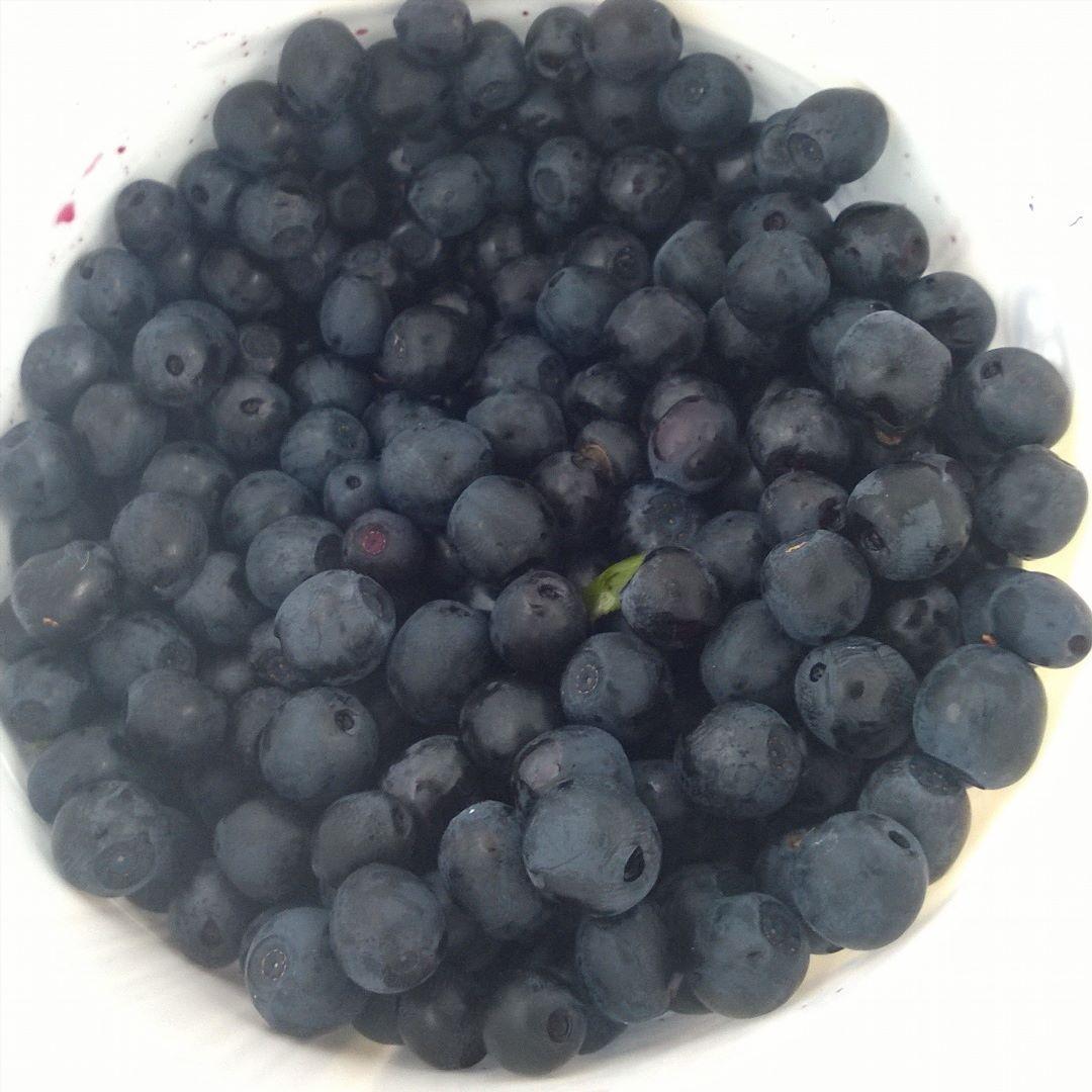 Metsässä riittää mustikoita vaikkei sienimetsästä aikaisempina vuosina ole löytynyt. #mustikka#blueberries #bilberries #marjastus
