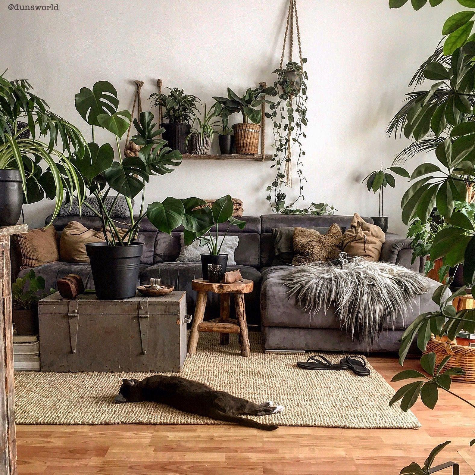 dunsworld Wohnzimmer pflanzen, Grüne wohnzimmer und