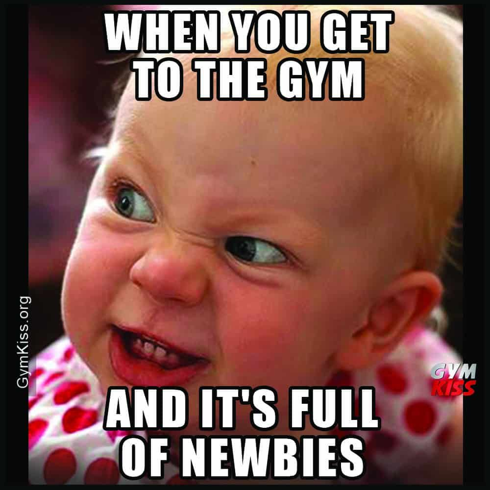 When You Get To The Gym And Its Full Of Newbies Gym Memes Funny Fun Workouts Workout Humor