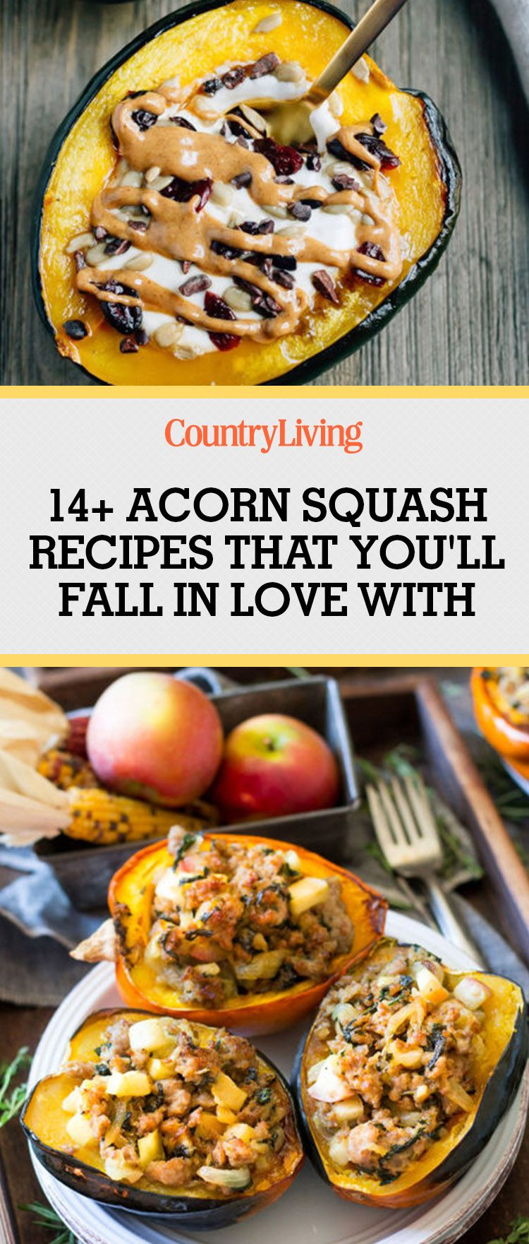 30 Acorn Squash Recipes for Your Fall Dinners Acorn