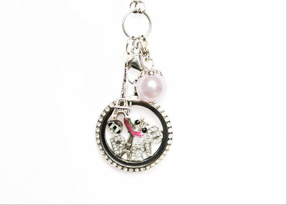 Lockets - Paris Theme Living Locket With Crystals by LinahsLockets on Etsy, $51.99