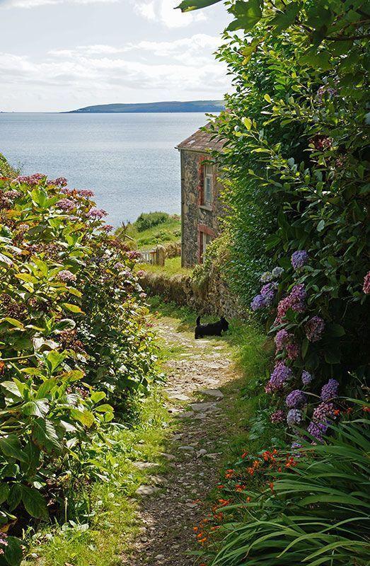The stories of my Mornings beautifulworld #beautifulplaces #cornwallcottages #cornwallhouse #cornwallengland #cottagesbythesea #englishcountryside #beautifullandscapes #paths