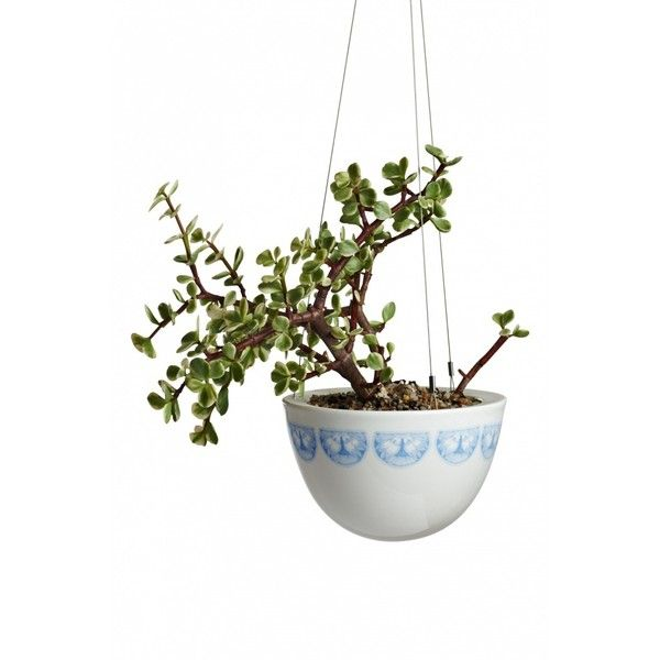 Small Hanging Garden Angus Celeste (96 CAD) ❤ Liked On Polyvore Featuring  Home,