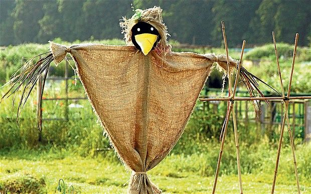 Scarecrows and scholars are not worlds apart Scare crow - halloween scarecrow ideas