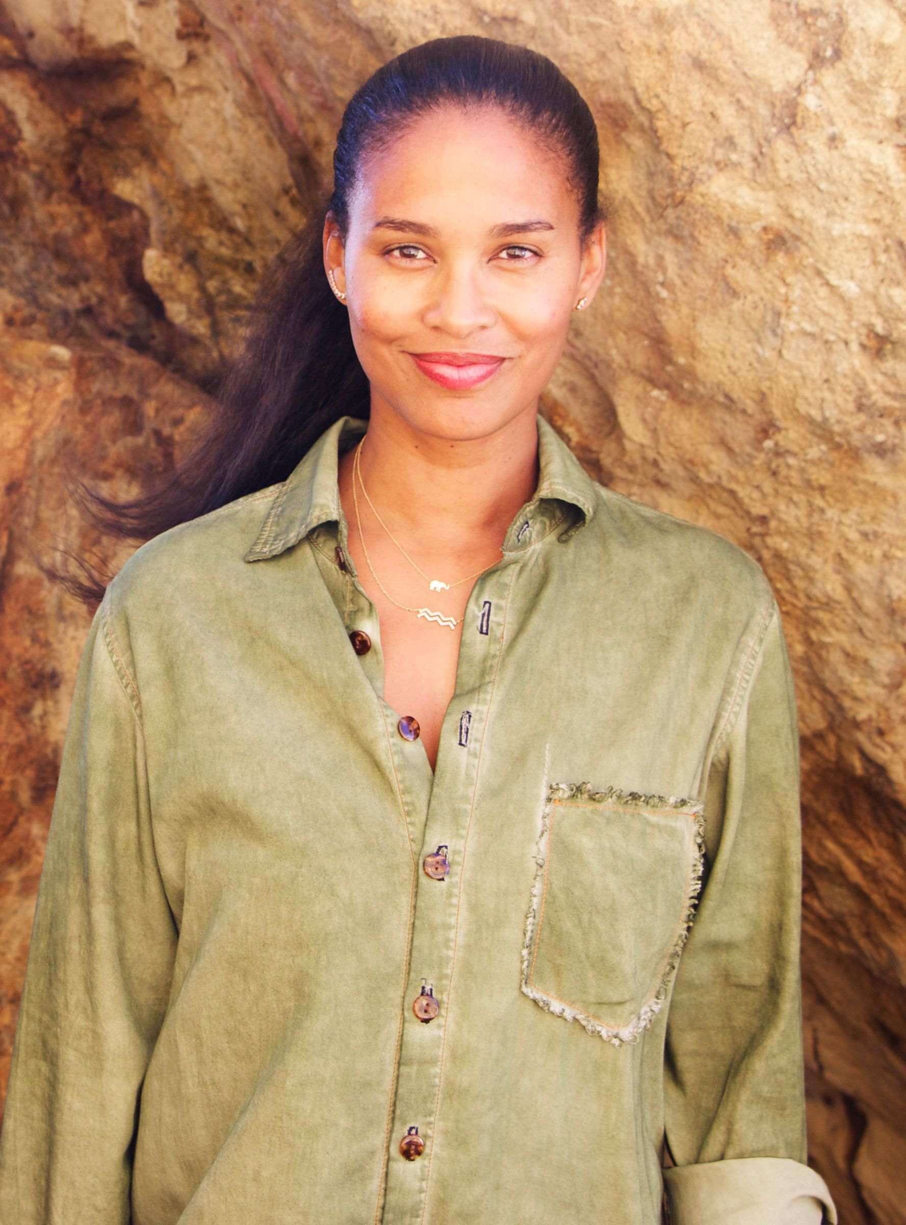 Joy Bryant movies