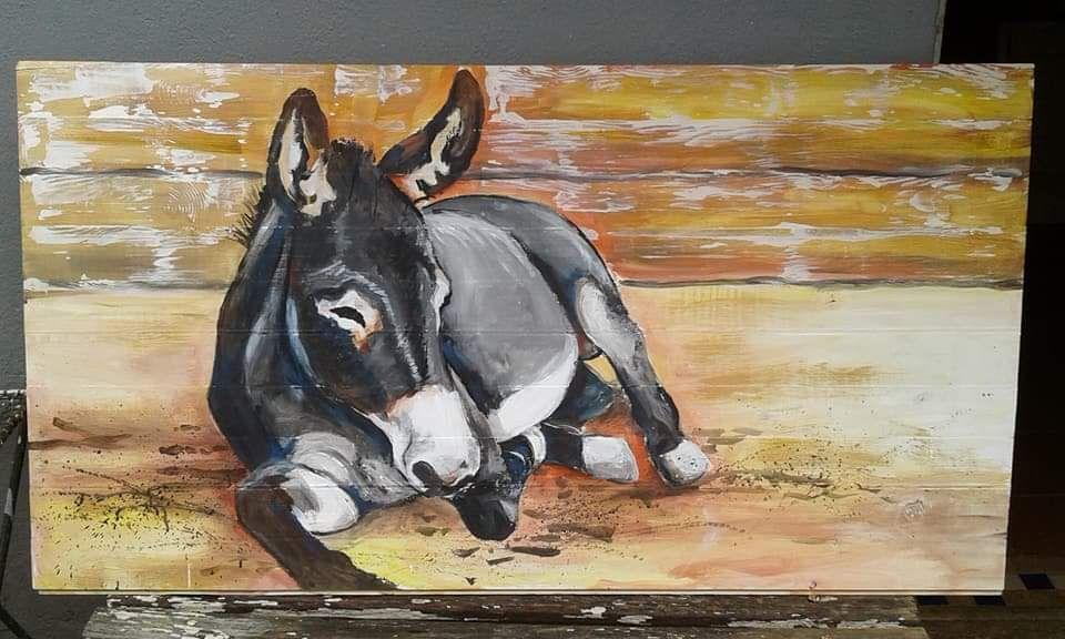 Donkey Sleeping By Artist Wilma Potgieter On Fb Art