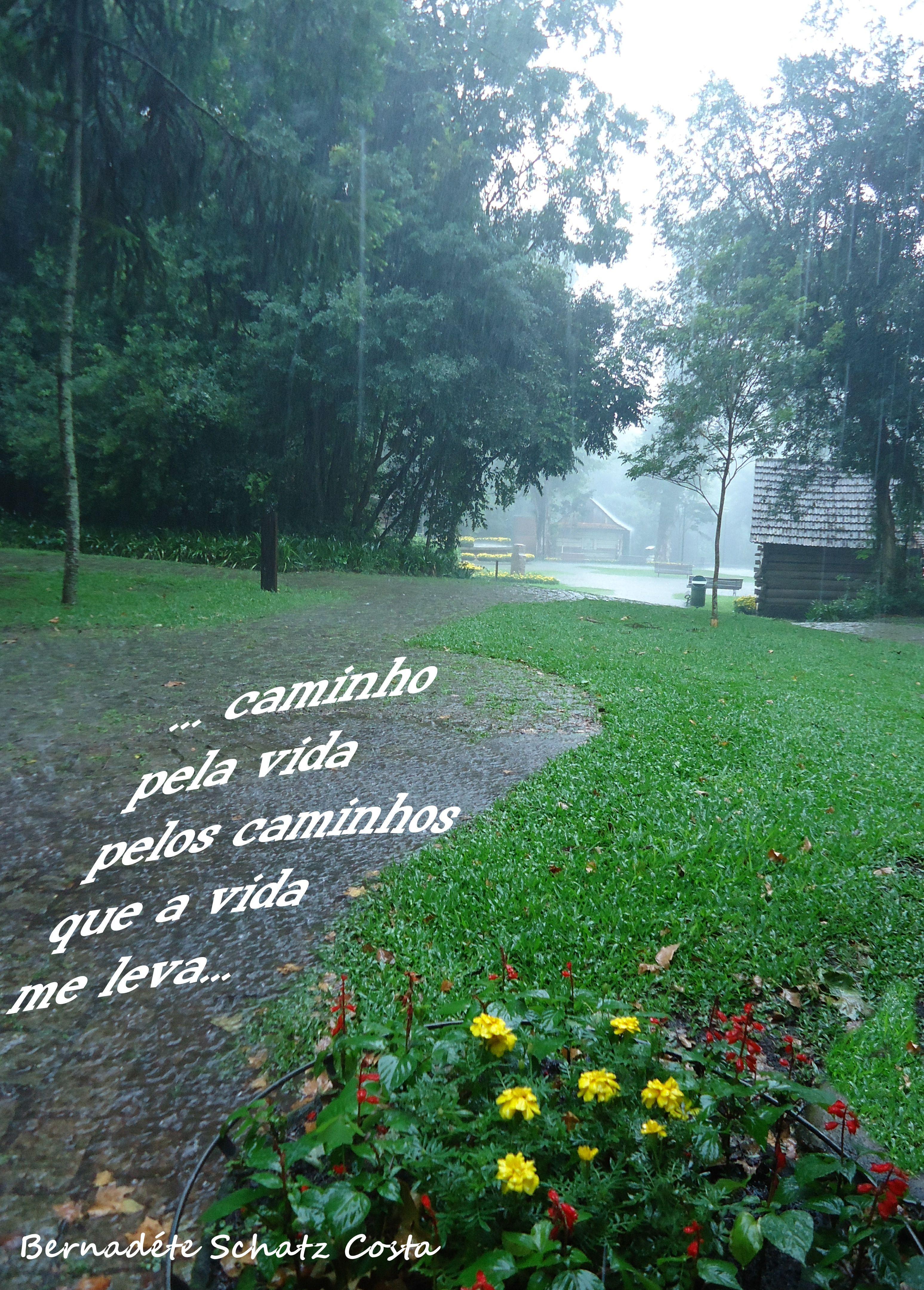 A vida em poemas http://www.sonharescrevereviver.blogspot.com.br/