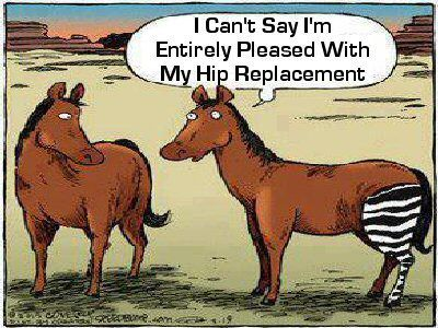 Hip Replacement Surgery By Autumng73 On Pinterest