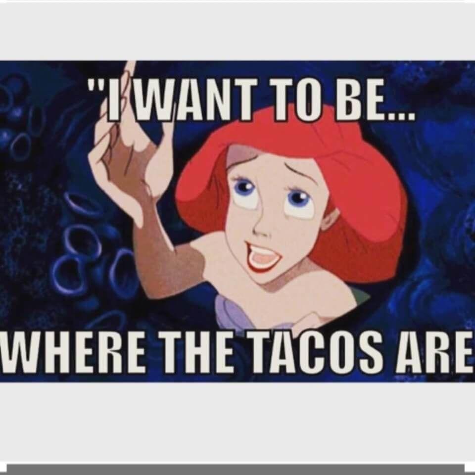HAPPY TACO TUESDAY EVERYONE!!!! #tacotuesdayhumor HAPPY TACO TUESDAY EVERYONE!!!! #tacotuesdayhumor