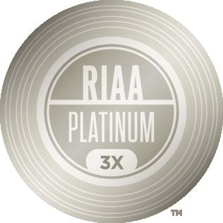 Gold Platinum Riaa Gold Platinum Platinum Burberry Purse