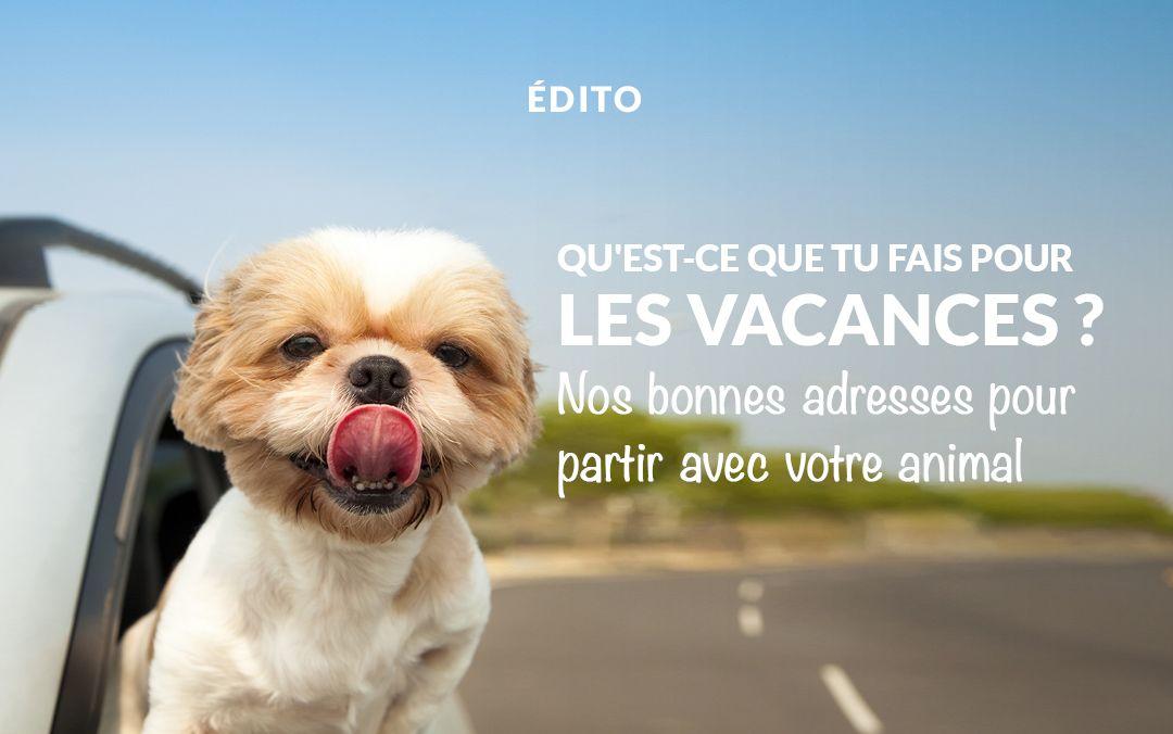 Où partir en vacances avec mon animal ?   https://fr.chabadog.com/mag/document/VZEc6isAALAAlIbh/ou-partir-en-vacances-avec-mon-animal-/