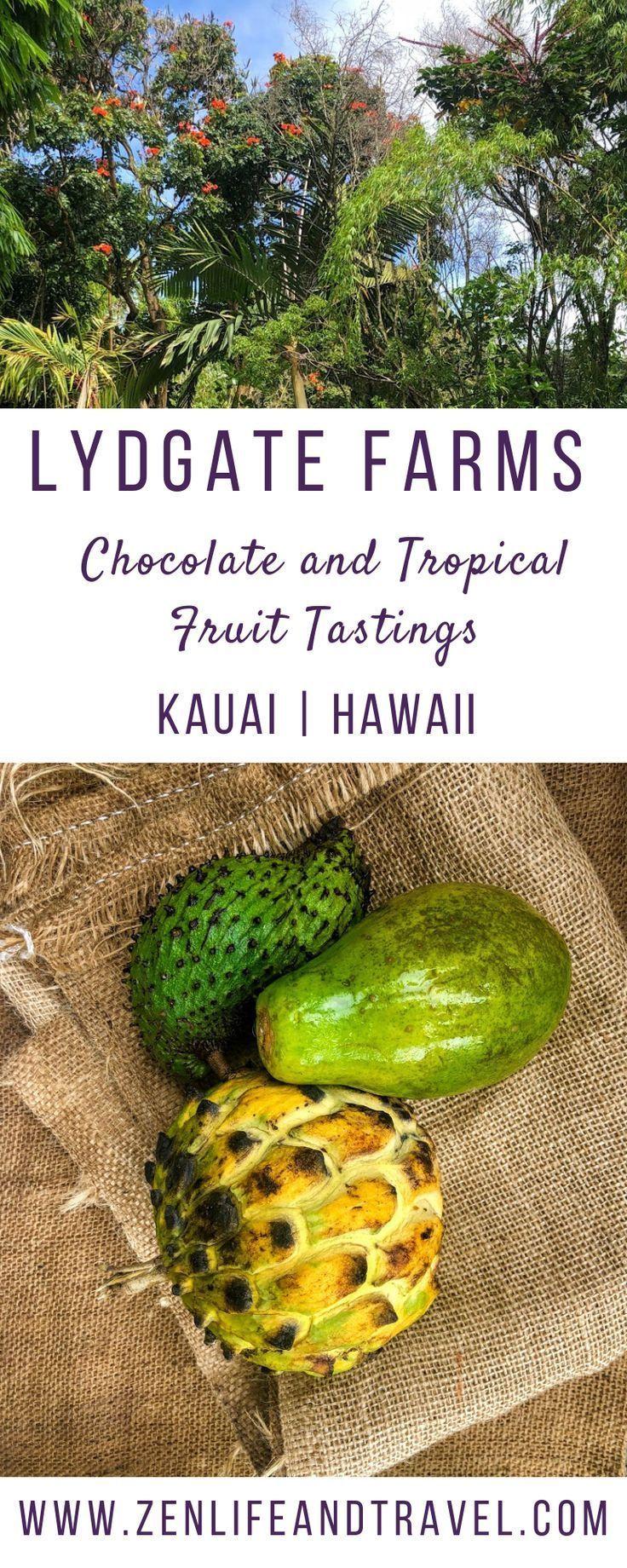 Chocolate Farm Tour On Kauai in 2020 Farm tour, Kauai