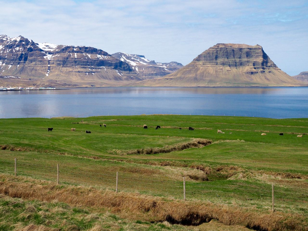 West Iceland and the Snaefellsness Peninsula: 5 Places You Can't Miss