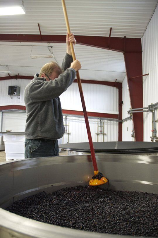 From Grape to Bottle: How Pinot Noir Wine Is Made In Oregon — Maker Tour