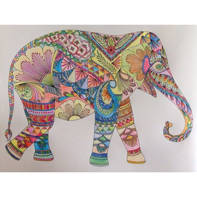 Colouring Book Elephant Colouringbook Bohemia Design Elephant T Millie Marotta Coloring Book Millie Marotta Animal Kingdom Animal Kingdom Colouring Book