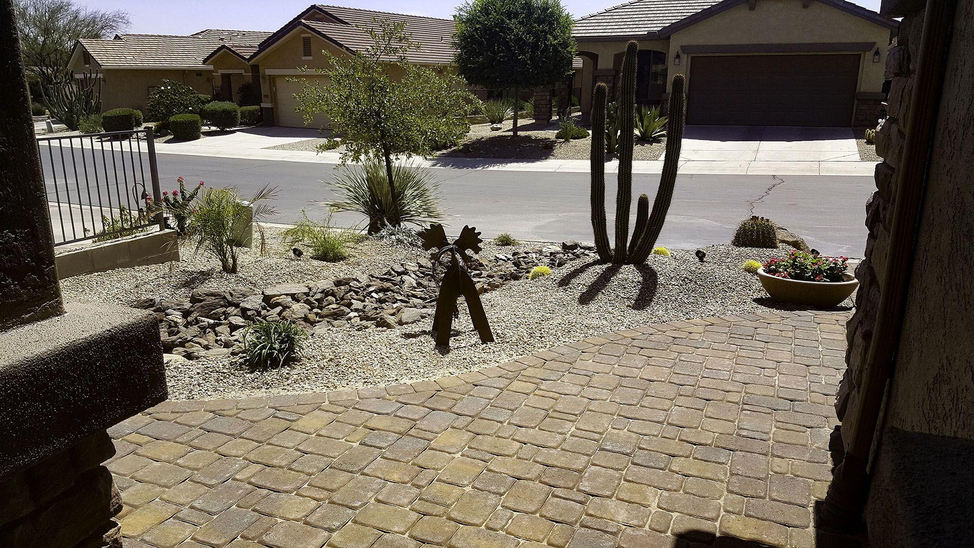 arizona front yard landscape design arizona front