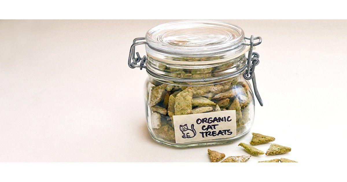 Homemade organic spinach and chicken cat treats recipe