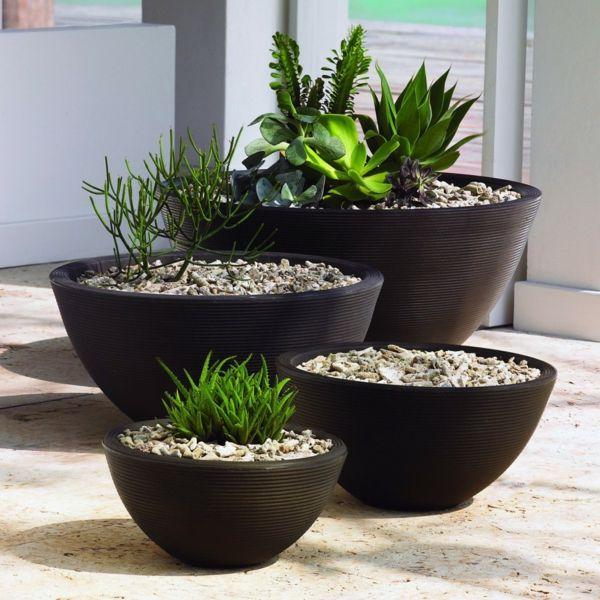 pflanzt pfe f r den innen und au enbereich peppen das ambiente auf garden pinterest. Black Bedroom Furniture Sets. Home Design Ideas