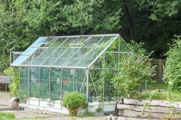 Glass for Your Greenhouse -