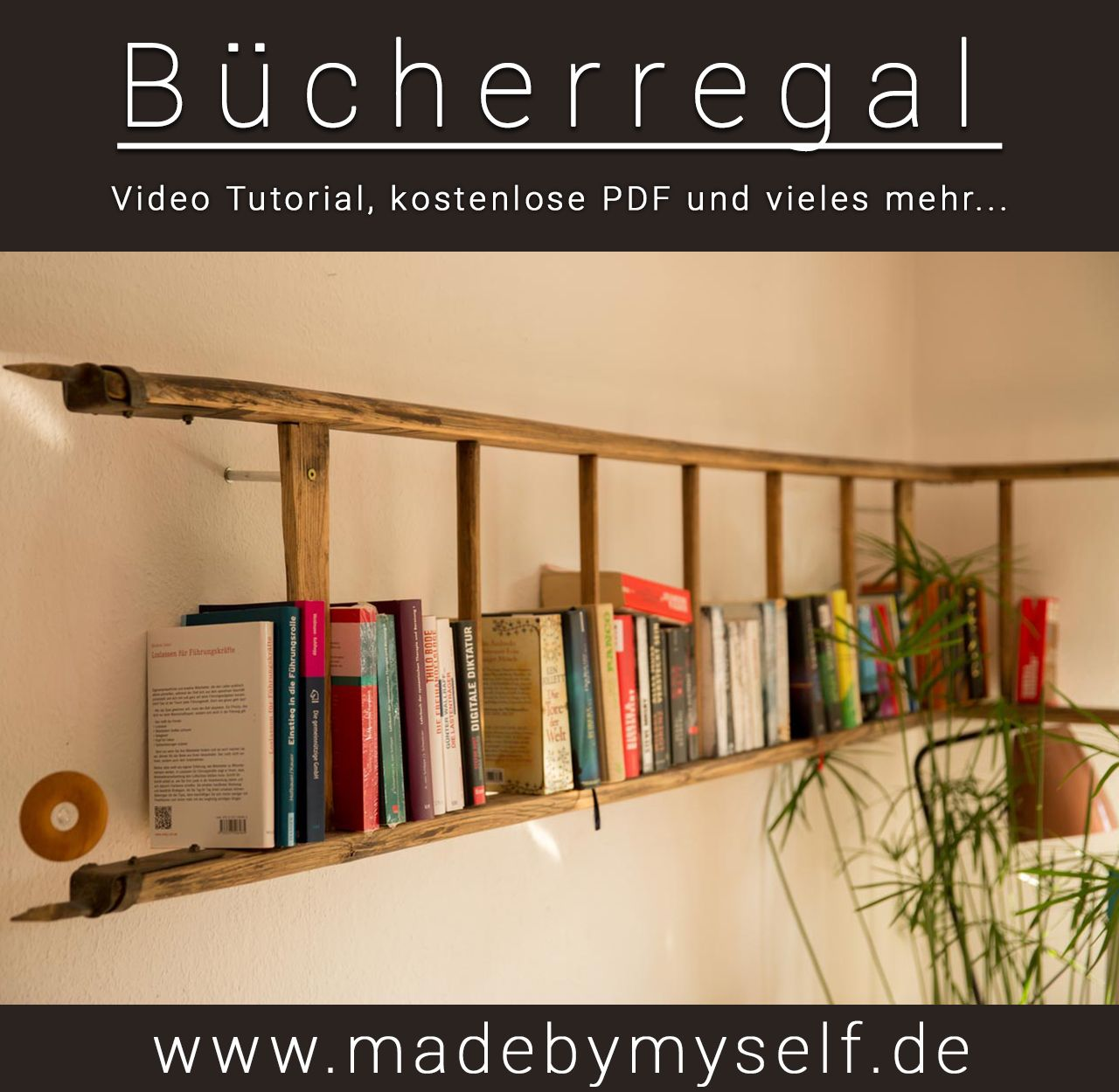 Bücherregal Leiter Bücherregal Regal Aus Alter Leiter Madebymyself Diy