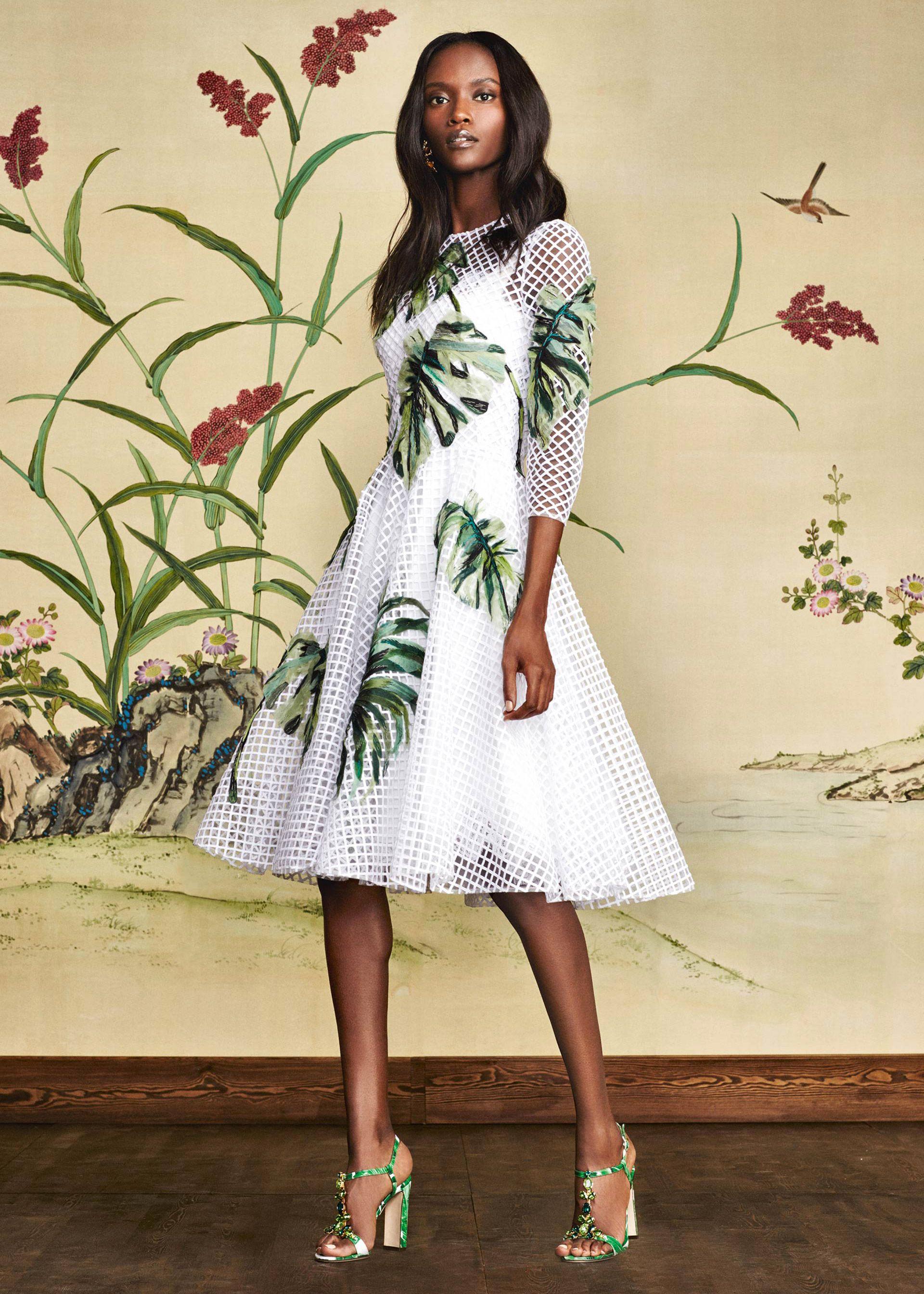 Scopri Dolce   Gabbana Collezione Donna Autunno Inverno 2016 2017 Giardino  Botanico e lasciati ispirare. 94040403bbc
