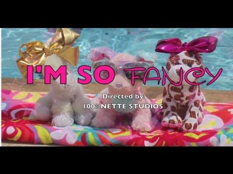 I'm So Fancy- Webkinz Music Video. BY; N e t t e r k i n z