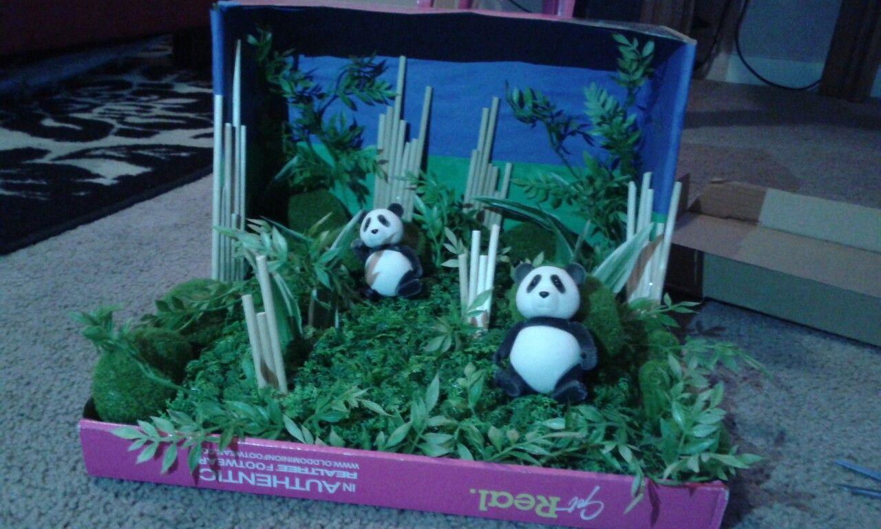 Panda Habitat Diorama Shoe Box Grass And Bamboo Sticks