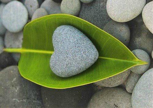Que o nosso coração seja corajoso o bastante para enfrentar as maldades alheias e forte o bastante para não se contaminar por elas. Rosi Coelho***