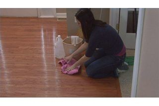 How To Get The Dog Pee Smell Out Of Linoleum Floors Cleaning Pet Urine Dog Pee