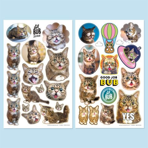 Lil bubs brilliant sticker sheets new