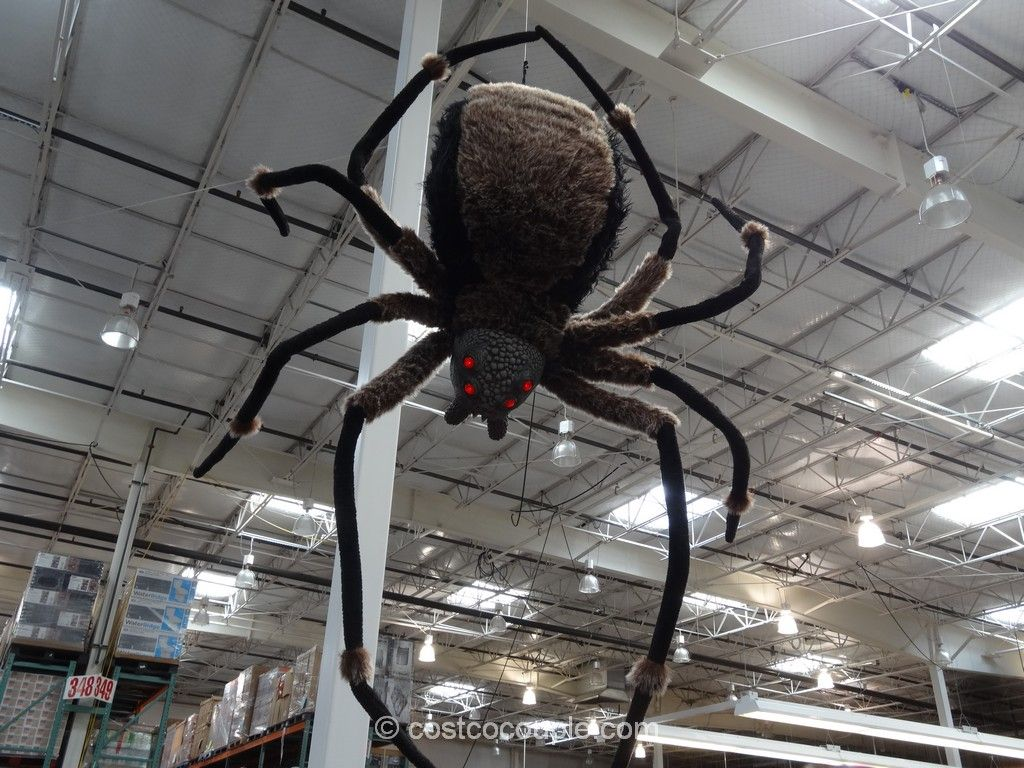 scare the trick or treaters on halloween with this giant spider with led eyes description