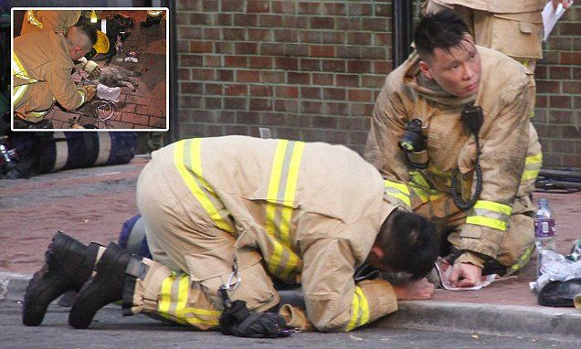 Firefighters give CPR to a CAT from a burning Hong Kong flat