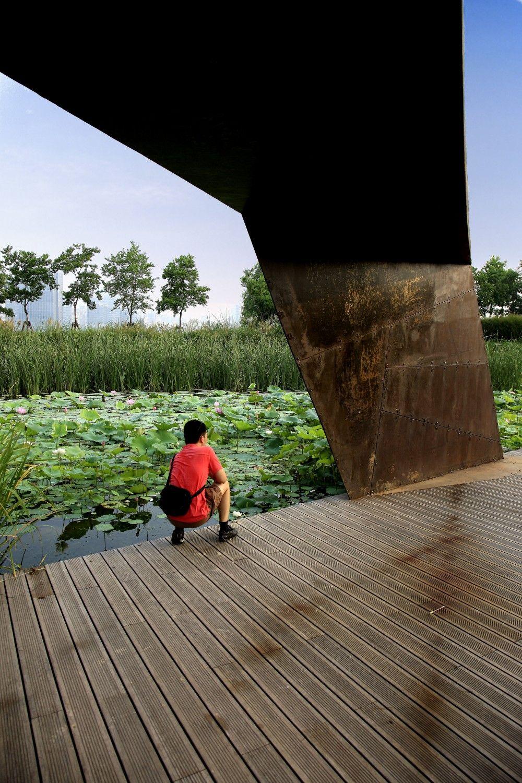Galería De Parque Houtan En Shanghai Turenscape 3