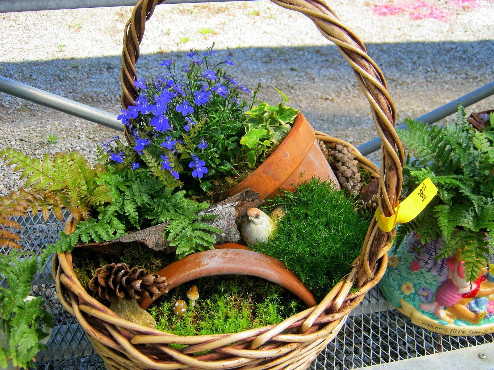 Good Use Of Broken Pots And Wicker Basket Lavender Garden