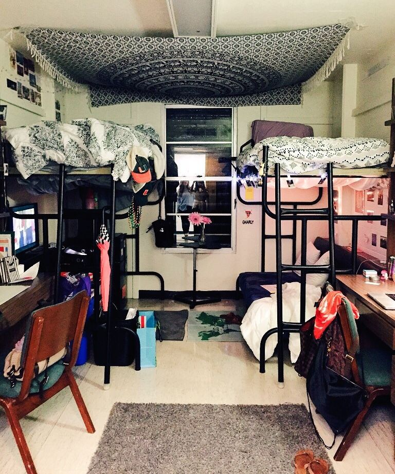 Delightful Fuck Yeah, Cool Dorm Rooms U2014 University Of Miami Part 4