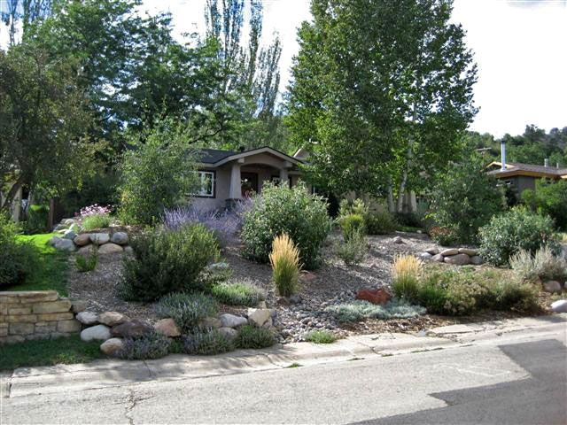 Xeriscape Landscaping Pictures In Colorado Naturescapes