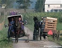Amish Family - Bing Images