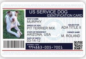Premium Id Card Dogs Photo Optional Service Dogs Dog Id Service Dog Vests